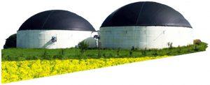 Biogaz Tesislerinde